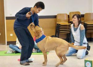 Therapiehund Diamo besucht die Lerche!
